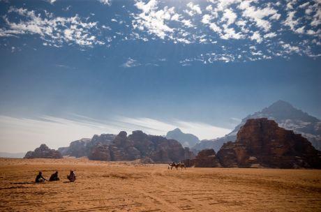 Camels in the Desert  (POTD)