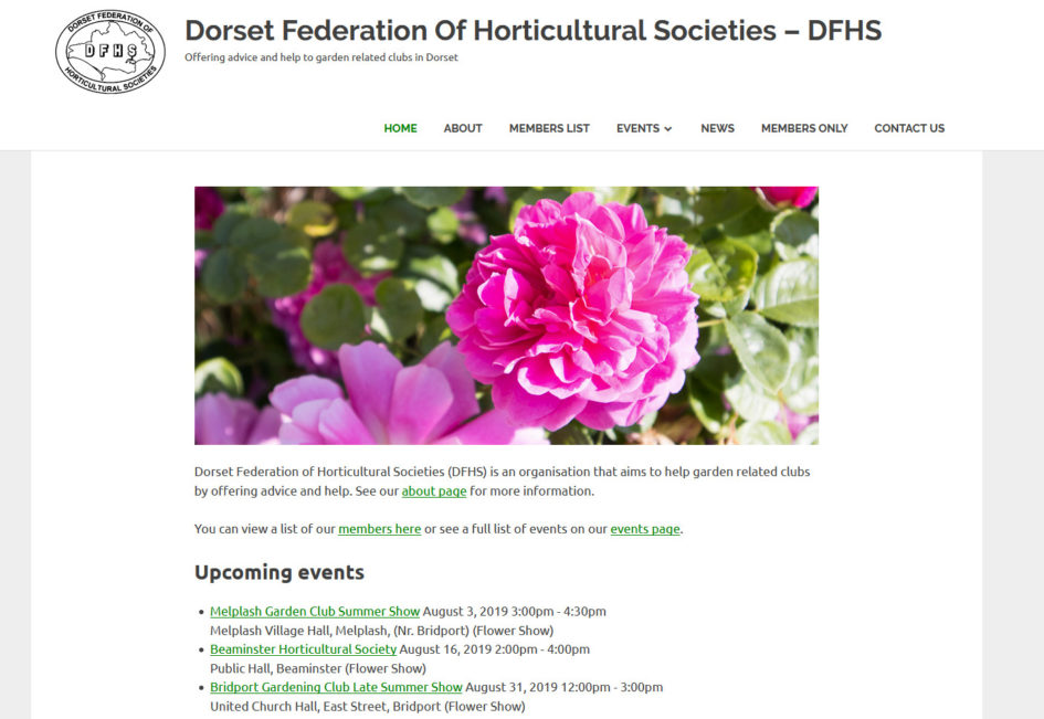 dorsetfederation.org.uk